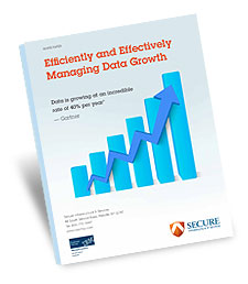 data-growth-white-paper.jpg